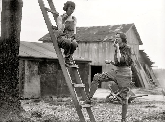 Wartime Gardeners